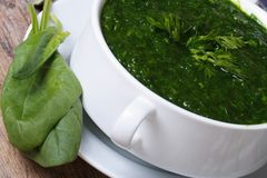 Vitamin green spinach soup macro Royalty Free Stock Photos