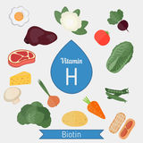 Vitamin H or Biotin infographic Royalty Free Stock Photo