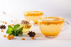 Vitamin healthy sea buckthorn tea in glass cups with fresh raw sea buckthorn berries and cinnamon sticks, anise stars, mint  and h Stock Photography