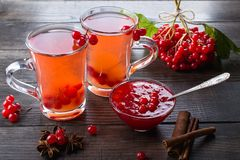 Vitamin healthy viburnum berry warm drink in glass cups with fresh raw viburnum berries and cinnamon sticks, anise stars. On a dark kitchen table Stock Photography