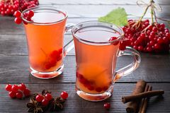 Vitamin healthy viburnum berry warm drink in glass cups with fresh raw viburnum berries and cinnamon sticks, anise stars. On a dark kitchen table Stock Images