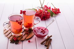 Vitamin healthy viburnum berry warm drink in glass cups with fresh raw viburnum berries and cinnamon sticks, anise stars Royalty Free Stock Photos