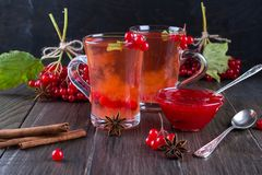 Vitamin healthy viburnum berry warm drink in glass cups with fresh raw viburnum berries. And cinnamon sticks, anise stars on a dark  kitchen table Stock Photo