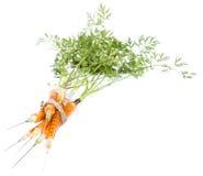 Vitamin Injection (Carrots) Stock Photography