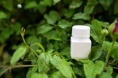 Vitamin-Kapseln auf Naturhintergrund Kräutermedizin, Konzept des Gesundheitswesens lizenzfreie stockfotografie