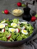Vitamin salad from lettuce, radish, green onions and eggs, seasoned with vegetable oil and mustard in plate on gray concrete backg. Round. Healthy food stock photo