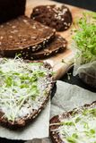 Vitamin sandwich for cheerfulness and well-being of black grain bread and micro greens.  royalty free stock photos