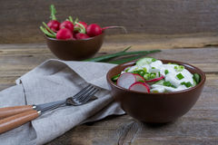 Vitamin spring salad: green onion, radish, cucumber, sour cream. Ingredients for vitamin spring salad: green onion, radish, cucumber, sour cream Royalty Free Stock Image