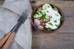Vitamin spring salad: green onion, radish, cucumber, sour cream. Top view Stock Photography