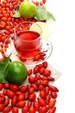 Vitamin tea with rose hips and lemon. Stock Images