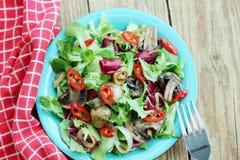 Vitamin warm salad Royalty Free Stock Images