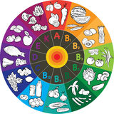 Vitamin Wheel. Vector illustration of vitamin groups in colored wheel Royalty Free Stock Images