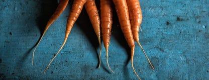 Vitamina antiossidante del carotene del raccolto di freschezza del mazzo delle carote per fotografia stock libera da diritti