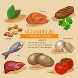 Vitamina b3 Vitaminas e alimentos de minerais Projeto gráfico dos ícones lisos do vetor Ilustração do encabeçamento da bandeira Foto de Stock Royalty Free