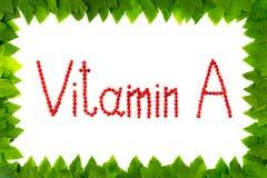 Vitamina A Bagas do corinto vermelho no fundo branco no quadro das folhas verdes Imagem de Stock