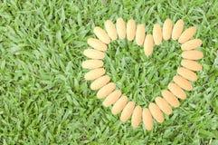 Vitamina C per cuore Fotografia Stock Libera da Diritti
