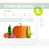 Vitamina infographic Fotografia de Stock Royalty Free