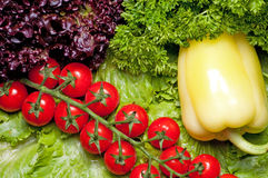 Vitaminansammlung Gemüse Lizenzfreie Stockfotos
