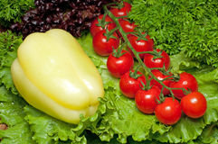 Vitaminansammlung Gemüse Lizenzfreie Stockbilder
