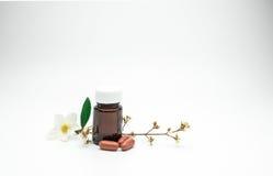 Vitamine en supplementcapsulepillen met bloem en tak en de lege fles van het etiket amberglas op witte achtergrond met exemplaarr Royalty-vrije Stock Foto
