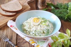 Vitamine lichte plantaardige salade met dille, selderie, eieren en Griekse yoghurt stock foto