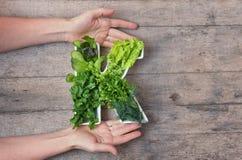 Vitaminek voedingsmiddel in voedselconcept Handen die van de vrouw brief K houden vormden plaat met verschillende verse blad groe royalty-vrije stock afbeeldingen