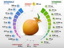 Vitaminen en mineralen van gemeenschappelijke ui Stock Afbeelding