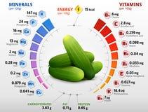 Vitaminen en mineralen van komkommerfruit Stock Afbeeldingen