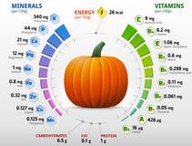 Vitaminen en mineralen van pompoen royalty-vrije stock foto's