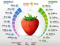 Vitaminen en mineralen van tuinaardbei Royalty-vrije Stock Afbeelding