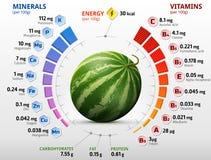 Vitaminen en mineralen van watermeloenfruit Royalty-vrije Stock Afbeelding