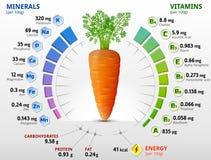 Vitaminen en mineralen van wortelknol stock afbeelding