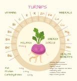 Vitaminer och mineraler Royaltyfri Fotografi