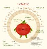 Vitaminer och mineraler Royaltyfri Foto
