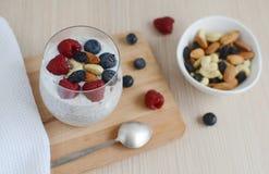 Vitaminfrühstücksjoghurt chia Samencocktail Lizenzfreie Stockfotos