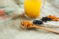 Vitaminic dennego buckthorn zdrowa herbata zdjęcie stock