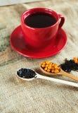 Vitaminic sunt svart te med havsbuckthornen arkivbilder