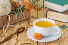 Vitaminic te med hav-buckthorn orange bär i en vit koppnolla Royaltyfria Foton