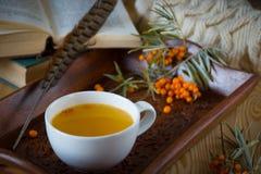 Vitaminic te med hav-buckthornen på trätabellen Royaltyfri Bild