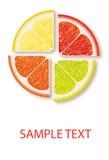 Vitaminlogo stock illustrationer