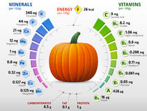 Free Vitamins And Minerals Of Pumpkin Royalty Free Stock Photos - 51777498