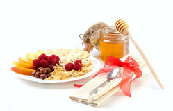 Vitamins breakfast  with honey Royalty Free Stock Photography