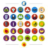 Vitamins, funeral, attributes and other web icon in cartoon style. Strawberry, berry, fruit, icons in set collection. Royalty Free Stock Photos