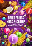 Vitamins in healthy dried fruits, cereals and nuts. Dried fruits, natural nuts and organic cereal food. Vector healthy nutrition superfood vitamins, vegan figs royalty free illustration