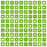 100 vitamins icons set grunge green Stock Photography