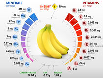 Vitamins and minerals of banana fruit. Infographics about nutrients in banana. Qualitative vector illustration about banana, vitamins, fruits, health food Royalty Free Stock Photos