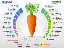 Vitamins and minerals of carrot tuber Stock Image