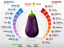 Vitamins and minerals of eggplant fruit. Infographics about nutrients in raw aubergine. Best vector illustration for agriculture, veggies, vitamins, health food Royalty Free Stock Photography