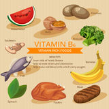 Vitamins and Minerals foods Illustration. Vector set of vitamin rich foods. Vitamin B6. Bananas, spinach, meat, nuts, poultry Royalty Free Stock Photo