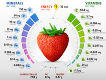 Vitamins and minerals of garden strawberry. Infographics about nutrients in strawberry fruit. Qualitative vector illustration for strawberry, vitamins, fruits Royalty Free Stock Image